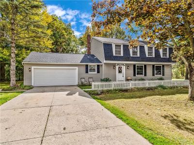 Hudson Single Family Home For Sale: 6005 Willow Lake Drive