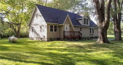Newton Falls Single Family Home For Sale: 3958 Pricetown Road