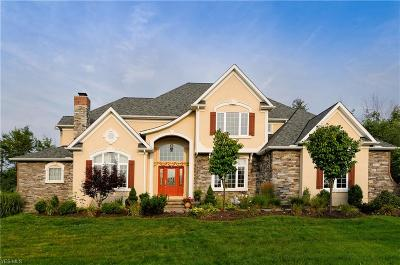 Solon Single Family Home For Sale: 7270 Royal Portrush Drive