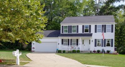 Ravenna Single Family Home For Sale: 851 Susan Road
