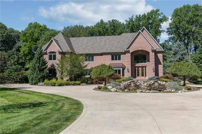 Lake County Single Family Home For Sale: 8305 Sanctuary Drive