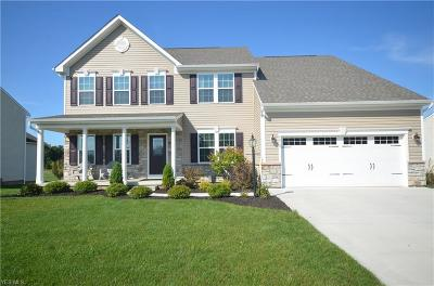 Kent Single Family Home Active Under Contract: 4819 Perie Wood Lane