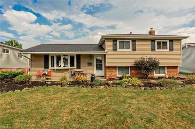Single Family Home For Sale: 1273 Giesse Drive
