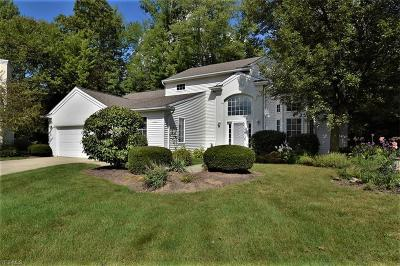 Twinsburg Single Family Home For Sale: 11254 Frederick Lane