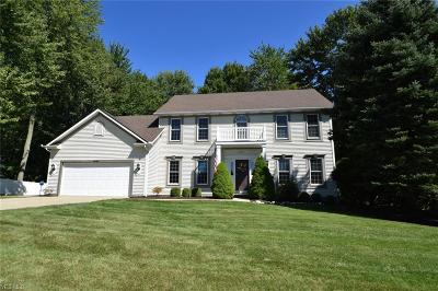 Hudson Single Family Home Active Under Contract: 6063 Nicholson Drive