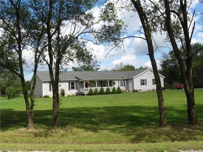 Medina County Single Family Home For Sale: 9969 Sanford Road