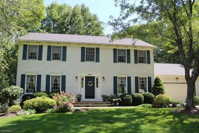 Hudson Single Family Home For Sale: 7897 Winterberry Drive