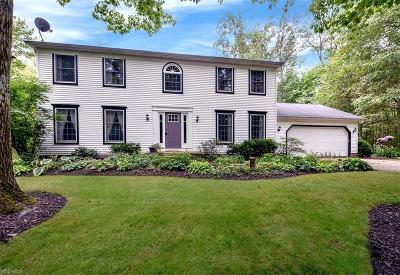 Chagrin Falls Single Family Home For Sale: 8751 Lake In The Woods Trail