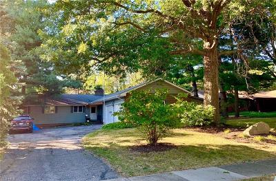 Lake County Single Family Home For Sale: 4270 Parklawn Drive