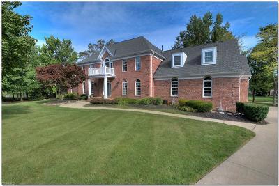 Hudson Single Family Home For Sale: 6531 Blackfriars Lane