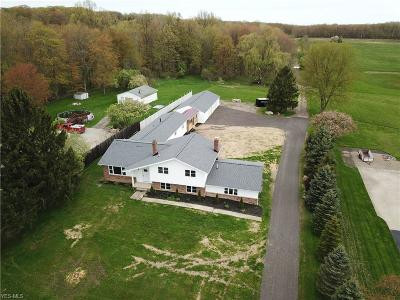 Lake County Single Family Home For Sale: 8693 Billings Road