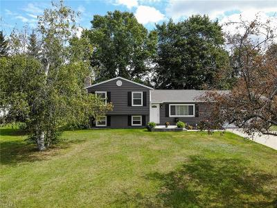 Ravenna Single Family Home Active Under Contract: 5502 Lakewood Road