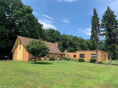 Lake County Single Family Home For Sale: 7643 Lake Shore Boulevard