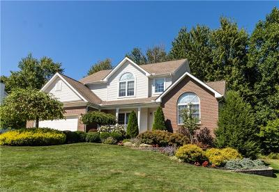 Lake County Single Family Home For Sale: 10047 Brookfield Drive