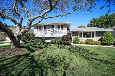 Lake County Single Family Home For Sale: 155 Erieview Drive