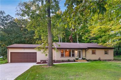 Single Family Home For Sale: 34865 Solon Road