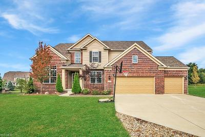 Twinsburg Single Family Home For Sale: 2043 Meadowood Boulevard