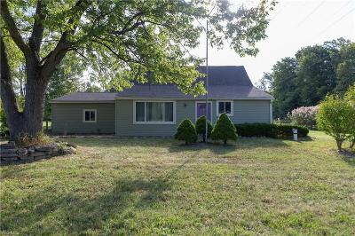 Single Family Home For Sale: 5877 Stow Road