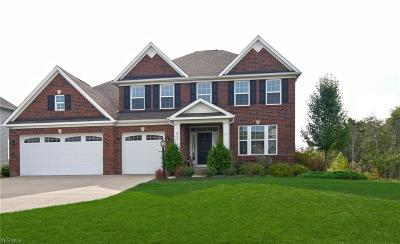 Hudson Single Family Home For Sale: 8107 Megan Meadow Drive