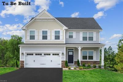 Twinsburg Single Family Home For Sale: 8857 Merryvale Lane