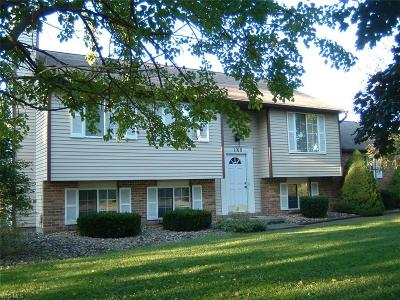 Lordstown Single Family Home For Sale: 1160 Salt Springs Road