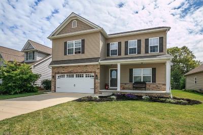 Lake County Single Family Home For Sale: 185 Shoreland Circle