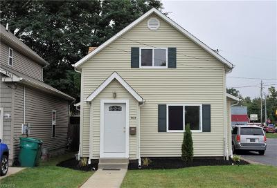 Lake County Single Family Home For Sale: 1035 Hayes Avenue