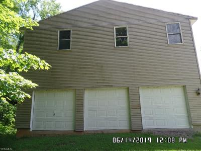 Blue Rock OH Single Family Home For Sale: $275,000