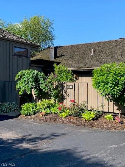 Aurora Condo/Townhouse Active Under Contract: 825-16 Chandler Lane