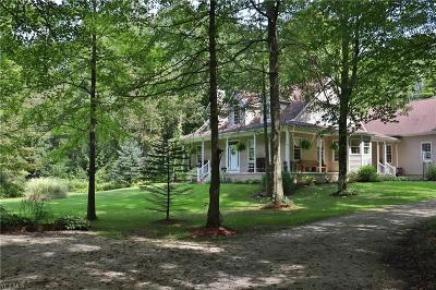 Garrettsville Single Family Home For Sale: 19175 Udall Road