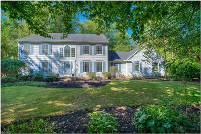 Chagrin Falls Single Family Home For Sale: 69 Waterford Drive