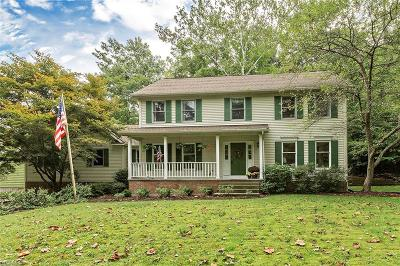 Beachwood, Chagrin Falls, Lyndhurst, Seven Hills, Solon, Aurora, Hudson, Kent, Reminderville, Sagamore Hills, Twinsburg Single Family Home For Sale: 375 Solon Road