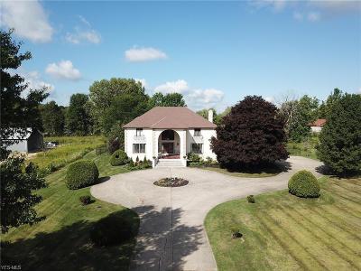 Medina County Single Family Home For Sale: 1776 Stony Hill Road