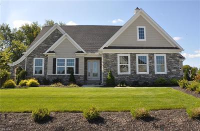 Lorain County Single Family Home For Sale: 573 Ravinia Lane