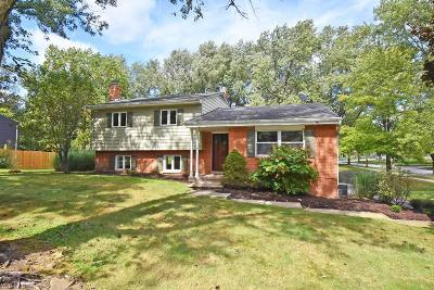 Brecksville Single Family Home For Sale: 6573 Mill Road