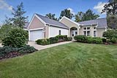 Twinsburg Single Family Home For Sale: 2540 Walton Boulevard