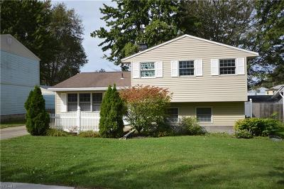 Painesville OH Single Family Home Active Under Contract: $129,900