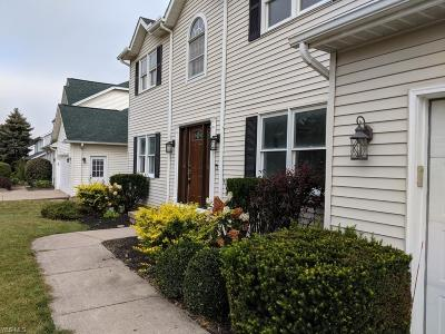 Beachwood, Chagrin Falls, Lyndhurst, Seven Hills, Solon, Aurora, Hudson, Kent, Reminderville, Sagamore Hills, Twinsburg Single Family Home For Sale: 32887 Pettibone Road