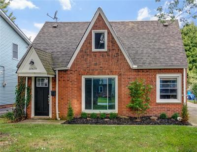 Lake County Single Family Home For Sale: 37679 Willow Drive