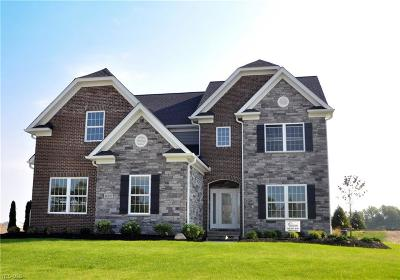 Lorain County Single Family Home For Sale: 36297 Ravinia Lane