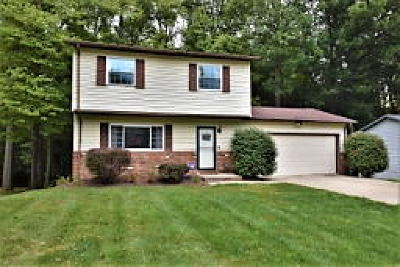 Twinsburg Single Family Home For Sale: 11309 Heritage Drive