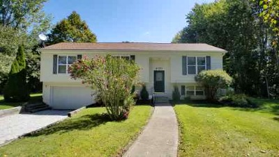 Lake County Single Family Home For Sale: 4173 Call Road