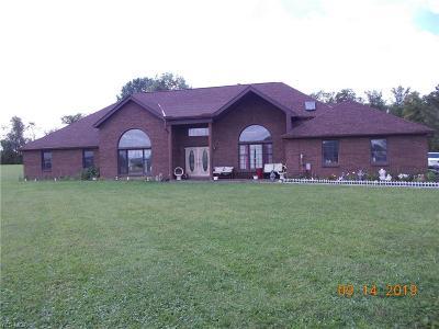 Medina County Single Family Home For Sale: 10800 Black River School Road
