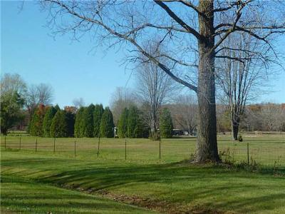 Swanton Single Family Home For Sale: 10900 Shaffer Road