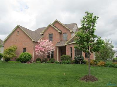 Wrenwood Single Family Home For Sale: 7858 Chestnut Ridge