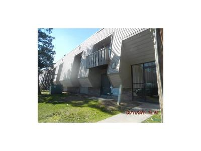 Maumee Condo/Townhouse For Sale: 6201 Garden Road #A8