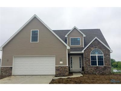 Toledo Single Family Home For Sale: 951 Plum Grove Lane