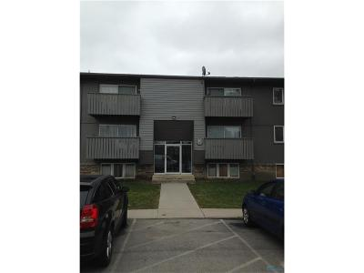 Maumee Condo/Townhouse For Sale: 6201 Garden Road #H142