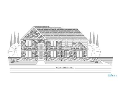 Sylvania Single Family Home Contingent: 5706 Anchor Hills