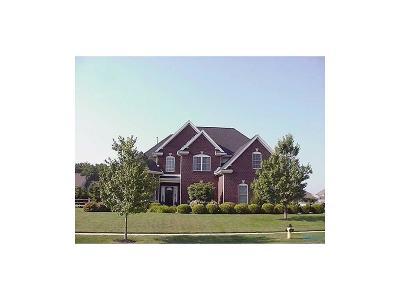 Monclova Single Family Home For Sale: 8465 Snapdragon Lane